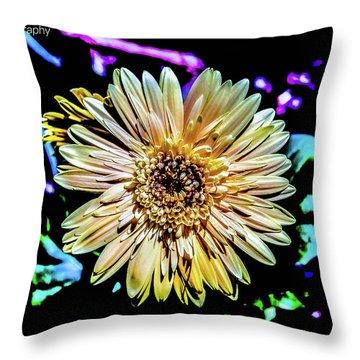 Gerber Daisy Throw Pillow