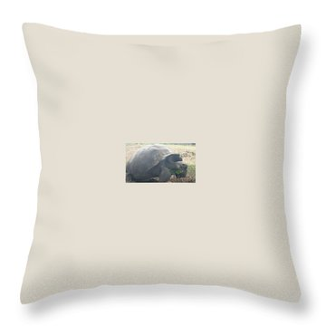 Giant Throw Pillow by Will Burlingham