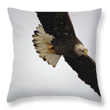 Gliding Throw Pillow
