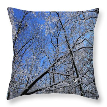Glowing Forest, Knoch Knolls Park, Naperville Il Throw Pillow