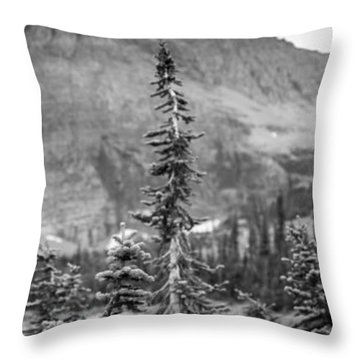 Gnarled Pines Throw Pillow