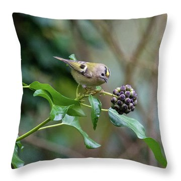 Goldcrest Throw Pillow