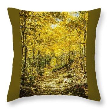 Golden Aspens In Colorado Mountains Throw Pillow