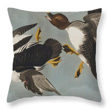 Golden-eye Duck  Throw Pillow by John James Audubon