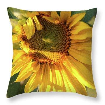 Golden 2 - Throw Pillow