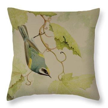 Golden-winged Warbler Throw Pillow