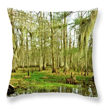 Grand Bayou Swamp  Throw Pillow by Scott Pellegrin
