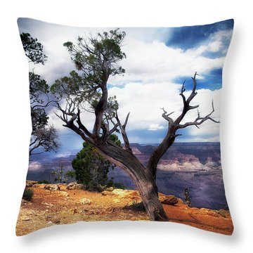Grand Canyon Throw Pillow by James Bethanis