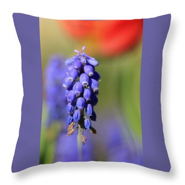 Throw Pillow featuring the photograph Grape Hyacinth by Chris Berry
