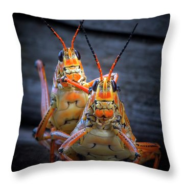 Grasshoppers In Love Throw Pillow