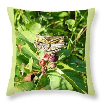 Grasshopper Love Throw Pillow
