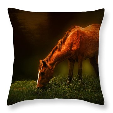 Grazing Throw Pillow by Charuhas Images
