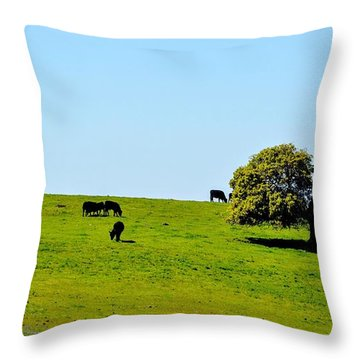 Grazing In The Grass Throw Pillow