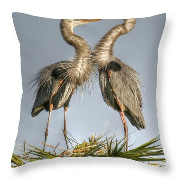 Great Blue Heron Couple Throw Pillow by Myrna Bradshaw