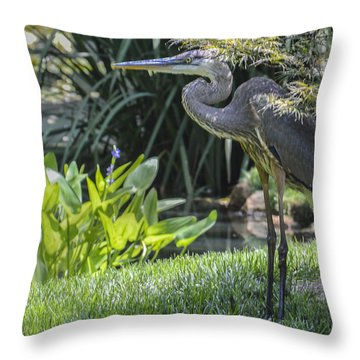Great Blue Heron Throw Pillow by Linda Geiger