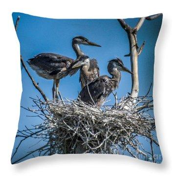Great Blue Heron On Nest Throw Pillow