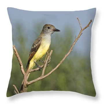 Great Crested Flycatcher Throw Pillow