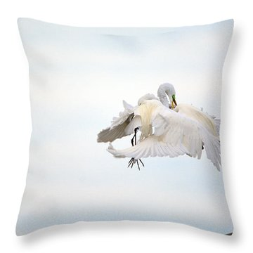 Great Egrets Mating Dispute Series  Throw Pillow