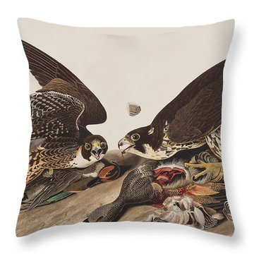 Great-footed Hawk Throw Pillow by John James Audubon