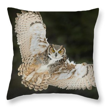 Great Horned Owl Wingspread Throw Pillow