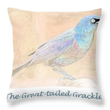 Throw Pillow featuring the digital art Great Tailed Grackle by A Gurmankin