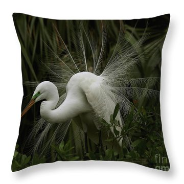 Great White Egret Displaying Throw Pillow