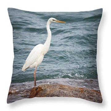 Great White Heron Throw Pillow by Elena Elisseeva