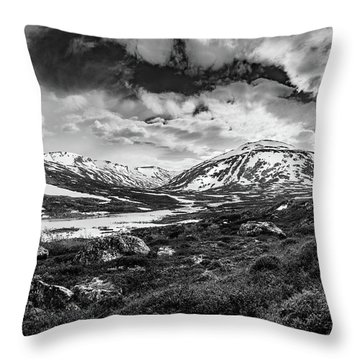 Throw Pillow featuring the photograph Green Carpet Under The Cotton Sky by Dmytro Korol
