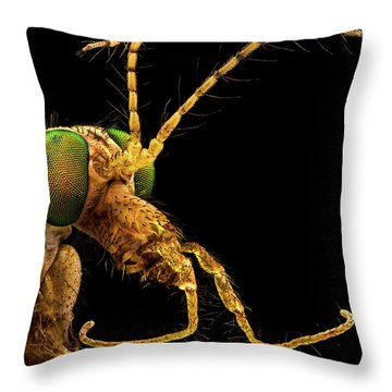 Throw Pillow featuring the photograph Green Eyed Crane Fly by Mihai Andritoiu