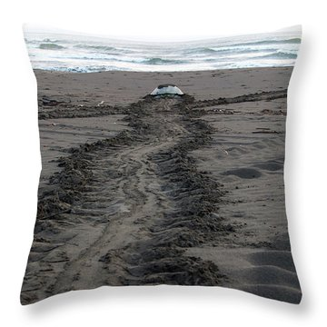 Green Sea Turtle Returning To Sea Throw Pillow