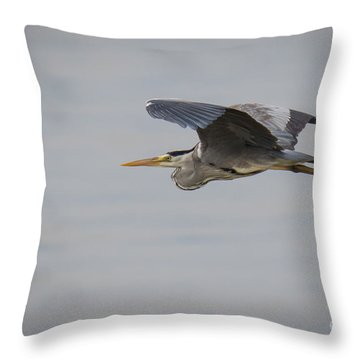 Grey Heron Throw Pillow