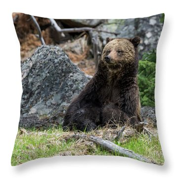 Grizzly Manor Throw Pillow by Scott Warner