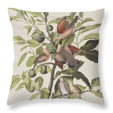 Ground Dove Throw Pillow by John James Audubon