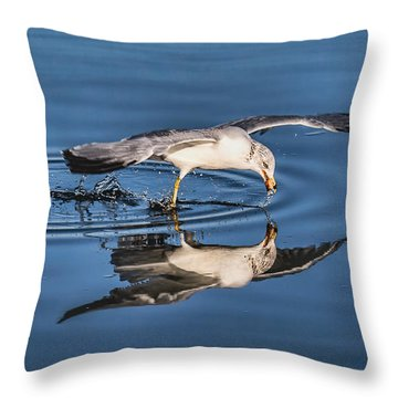 Gull Reflection Throw Pillow