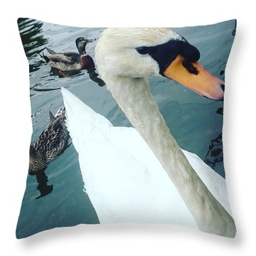 Hakucho Means Swan  Throw Pillow