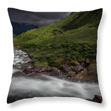Snowmelt Throw Pillows