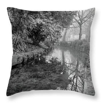 Throw Pillow featuring the photograph Hampden Park, Eastbourne by Will Gudgeon