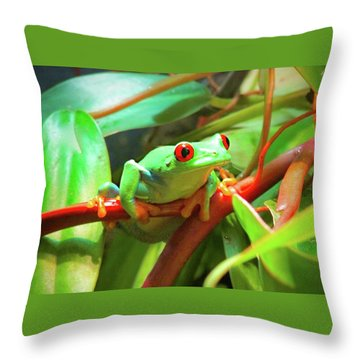 Hangin' In There Throw Pillow
