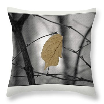 Hanging In The Balance Throw Pillow by Sue Stefanowicz