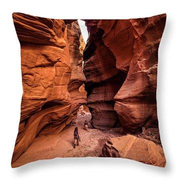 Happy Canyon Throw Pillow