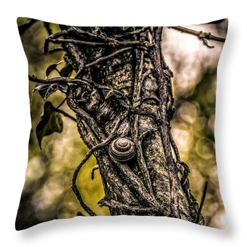Hard Road Throw Pillow