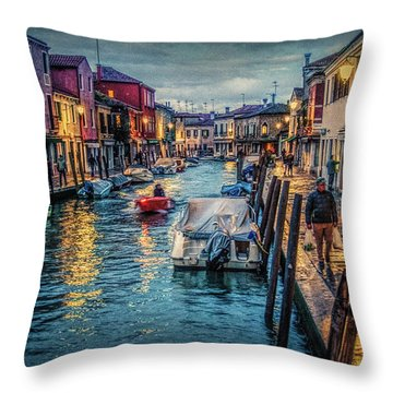 Heading For Home. Throw Pillow by Brian Tarr
