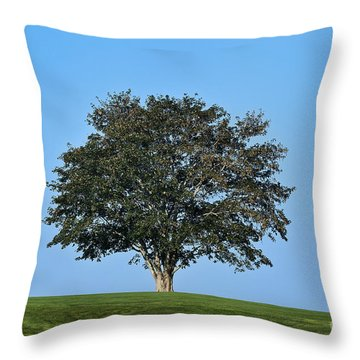 Healthy Tree Throw Pillow by John Greim