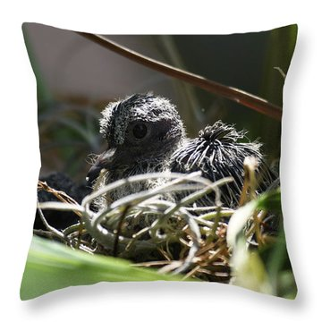 Throw Pillow featuring the photograph Hello by Sally Sperry
