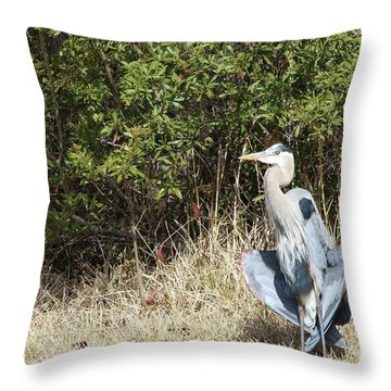 Throw Pillow featuring the photograph Henry The Heron by Benanne Stiens