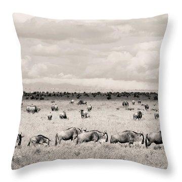 Herd Of Wildebeestes Throw Pillow