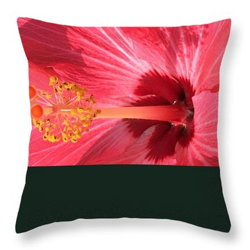 Hibiscus Throw Pillow by Kay Gilley