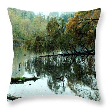 Hidden Lake Throw Pillow by Kathleen Grace