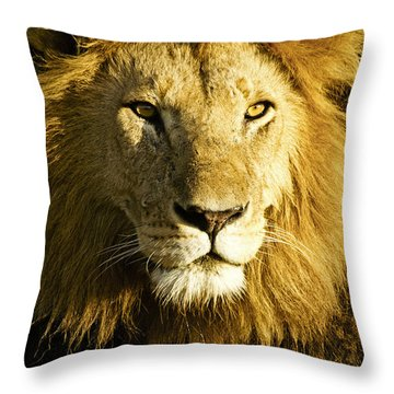 His Royal Highness Throw Pillow by Michele Burgess