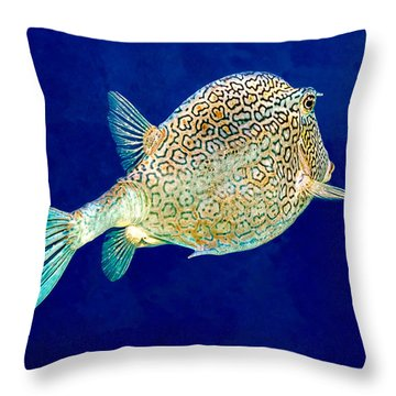 Throw Pillow featuring the photograph Honeycomb Cowfish by Perla Copernik
